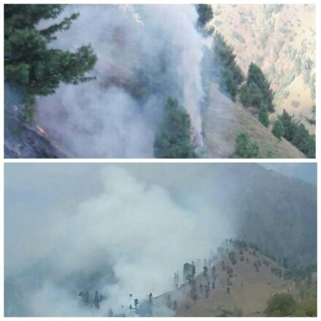 Fire in Uri forests cause fear among locals