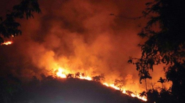 Kamla forests near Shikargah resort of Tral go up in flames