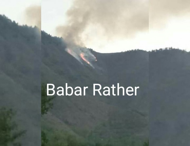 Fire erupted in compartment No. 145 and 146 in Chitteybandy and Aragam area falling under Ajas forest range